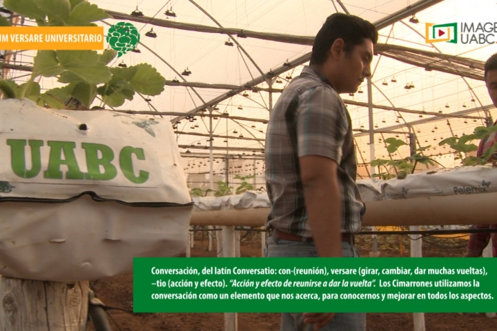 Embedded thumbnail for Cum Versare Facultad de Ingeniería y Negocios San Quintín